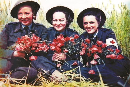 1 B GRANDES FEMMES DANS LA GUERRE Molly in a field with Poppies Bibliotheque et archives Canada CENTRE JUNO BEACH