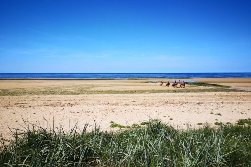 BALADE A CHEVAL PLAGE CREDIT AMELIE PANKOW 2